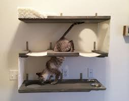 wall mounted cat furniture. Perfect Mounted TriLevel Cat Shelves To Wall Mounted Furniture T
