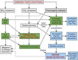 Flow Chart Of Causes Of Global Warming Global Warming Cause And Effect Diagram Wiring Diagrams