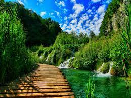 Beautiful nature wallpaper ...