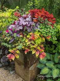 Container Garden Design Awesome Decorating Design