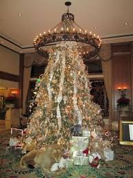 Christmas Tree in Lobby of the Inn at Biltmore - Picture of ...