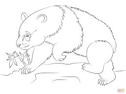 Small Picture Coloring Pages Animals Walking Panda Bear Coloring Pages Panda