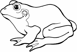 Small Picture Frog Coloring Page Princess U Frog Coloring Page Pages Of Epicness