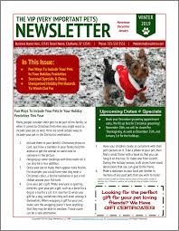 Dog Grooming Winter Holidays Newsletter Template