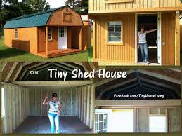 Small Picture Tiny Shed House great way to get started when youre in a tight