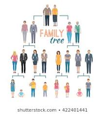 Family Chart Family Tree Chart Images Stock Photos Vectors Shutterstock