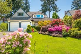 beautiful landscaped garden designs