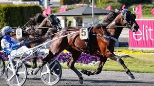 Elitloppet är ett inbjudningslopp och varje år bjuds 16 hästar som utmärkt sig in till elitloppet. Cokstile Klar For Elitloppet 2021 Solvalla