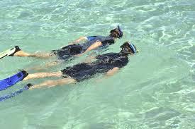 Seavenger Wetsuit Size Chart Seavenger Tropical Shorty Wetsuit Review Get Wet Suit Pro