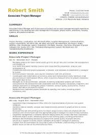 Project Manager Resumes It Program Manager Resume Sample Sample