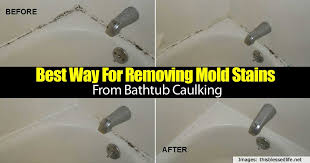 best way for removing mold stains from bathtub caulking home garden pulse