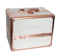 rose gold makeup train case