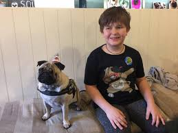 pug mad autistic boy s dreams came true when birthday wellwishers showered him with gifts and cards of his favourite canine