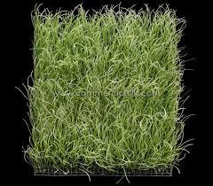 pearl grass wall mat foliage light green
