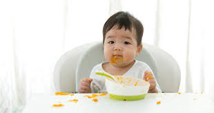 the 3 ses of baby food what foods
