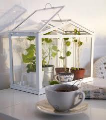 Indoor Kitchen Gardening Garden Design Garden Design With Apartment Gardening Ideas Diy