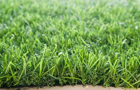 ландшафтная трава оптом