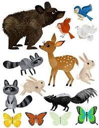 Image result for pics of forest animals preschool