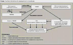 Реферат Фонды обязательного медицинского страхования их роль в  Фонды обязательного медицинского страхования их роль в финансировании расходов на здравоохранение в Российской Федерации