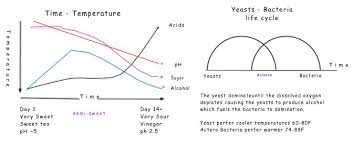 Yeast Temperature Chart Time And Temperature