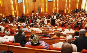 Image result for Nigerian senate lawan