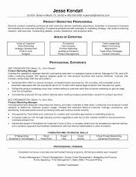 Resume Sample Business Analyst Elegant Junior It Awesome Product