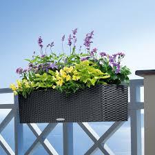 indoor  outdoor planters  hayneedle