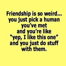 Friendship Quotes Top 40 Very Funny Friendship Quotes Friends Fascinating Funny Inspirational Quotes About Friendship
