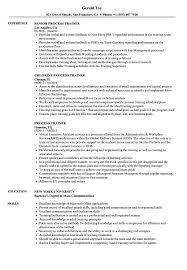 Resume Of Trainer Process Trainer Resume Samples Velvet Jobs