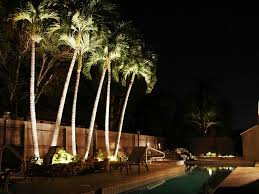 furniture stella led palm tree light bradley lighting outdoor