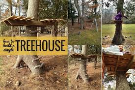Plain Simple Tree House Ideas For Kids Way To Build A Treehouse Diytreehouse With Impressive