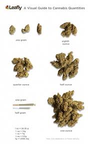 Marijuana Gram Scale Chart From Grams To Ounces And Pounds Of Weed Measurements
