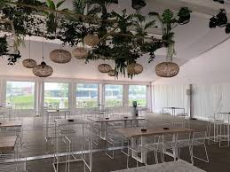 Ceiling Light With Plant Plants And Lighting From Ceiling Windows Ceiling Lighting