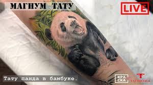 панда эскиз тату панда обзор самых красивых от эскиза до