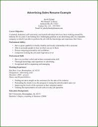 Examples Of Career Objectives For A Resume Fabulous Cv