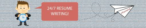 Professional Resume Apex Career Services