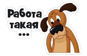 Видворену з РФ проросійську пропагандистську Бойко (Віщур) везуть в СБУ Львова - Цензор.НЕТ 3202