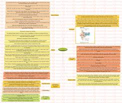 insights mindmaps mental health care in and floods in insights mindmaps mental health care in and floods in insights