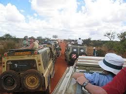 African Safari Trip
