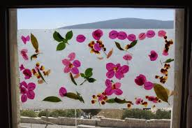 Wax Paper Flower Fun With Wax Paper Pressed Leaf And Flower Art Wax Paper