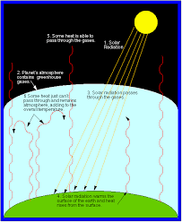 The greenhouse gases absorb these waves and reemits the waves downward  causing the lower atmosphere to warm