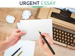 urgent essay writing service we will help you  urgent essay writing service