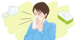 アレルギー性鼻炎(花粉症)の症状・原因・予防法 | アレルラボ