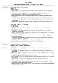 Resume Format For Accounts Manager Strategic Account Manager Resume Samples Velvet Jobs 24