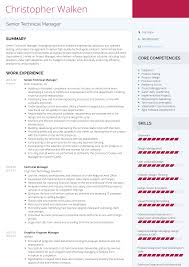 Modern Cv Sample 017 Software Engineering Manager Resume Template Technical
