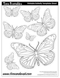 Printable Butterfly Outline Printable Butterfly Templates And Butterfly Shapes