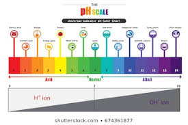 Acid And Base Chart Acid Base Balance Images Stock Photos Vectors Shutterstock