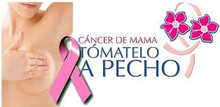 Resultado de imagen de cancer de mama lucha