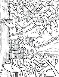 rainforest animals printable activities printable coloring pages colouring sheets printable coloring pages colouring sheets colouring page
