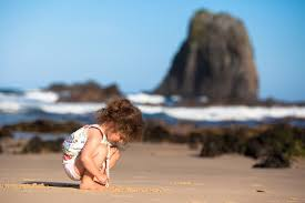 Image result for school holidays beach